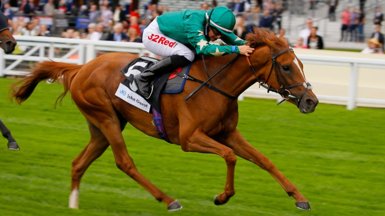 Josephine Gordon will partner Jousi (pictured) in the Sweet Solera Stakes at Newmarket on Saturday