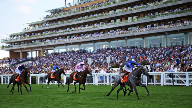 Librisa Breeze, winner of last year's race, is an Ascot specialist like many of these