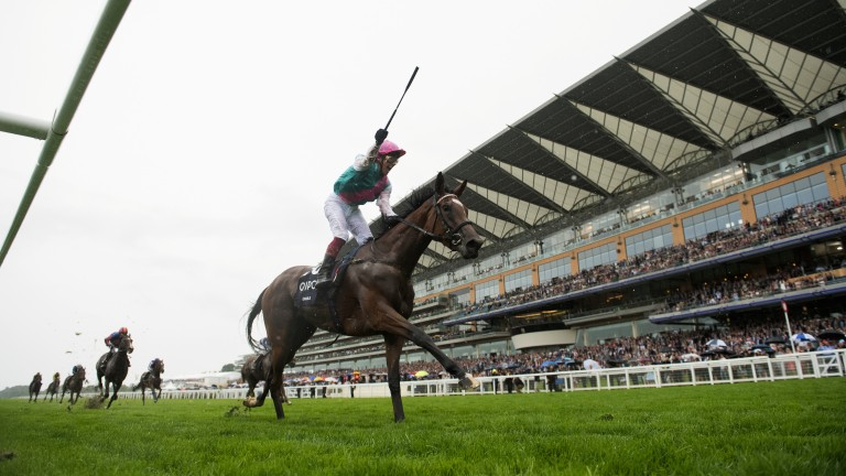 Enable: cut to a general 2-1 for the Arc