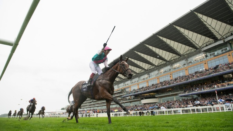 """Enable: """"There is an extra week between Ascot and York this year, which has helped with her preparation"""""""