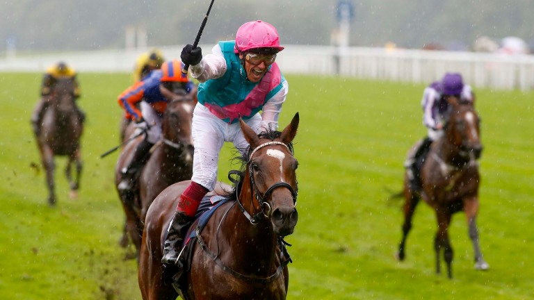 Enable: brilliant winner of the King George could have the Arc at her mercy