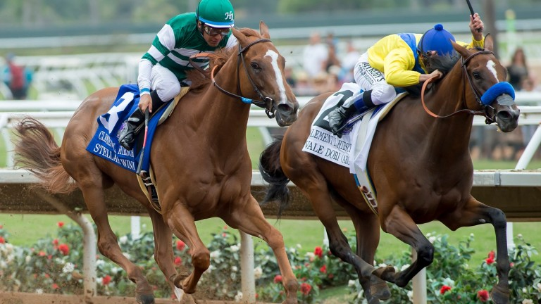 Vale Dori (right): returned to form
