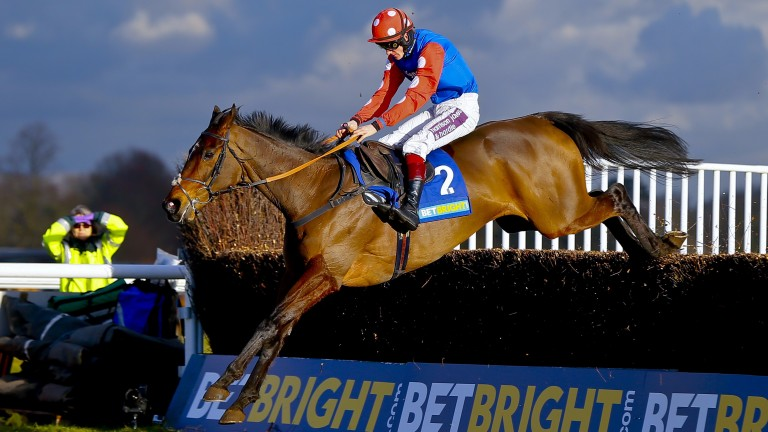 Rocky Creek: son of Dr Massini wins the Grade 3 BetBright Chase at Kempton Park