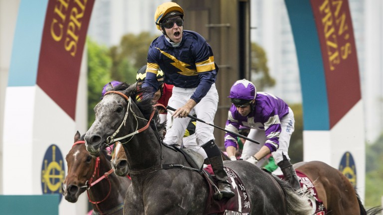 Steve Moran believes classy sprinter Chautauqua deserves one more chance