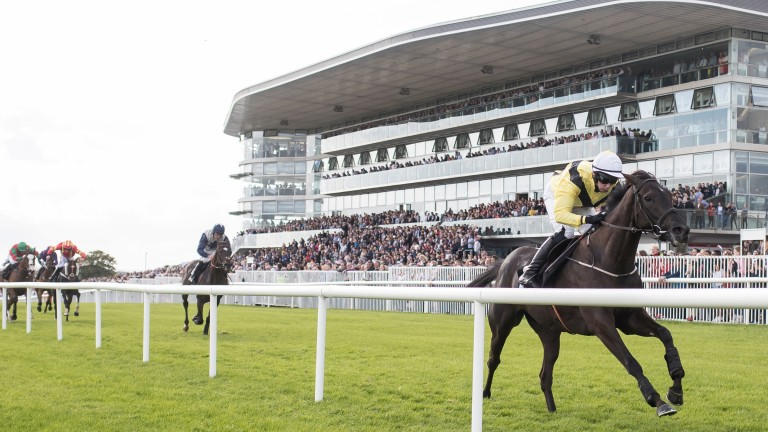 The seven-day extravaganza at Galway begins on Monday