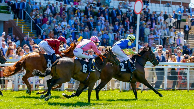 Firenze Rosa (Josephine Gordon, nearside) is third at Goodwood earlier this year