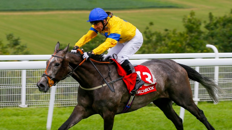 Star Rider bids for back-to-back successes in the Goodwood Handicap