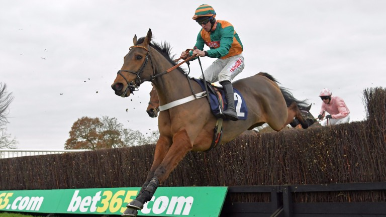 Cole Harden: flying a fence at Wetherby on chasing debut but that was a rarity in an odds-on defeat