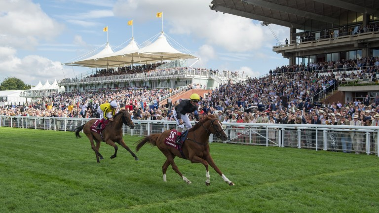 Stradivarius: wins the Goodwood Cup from Big Orange