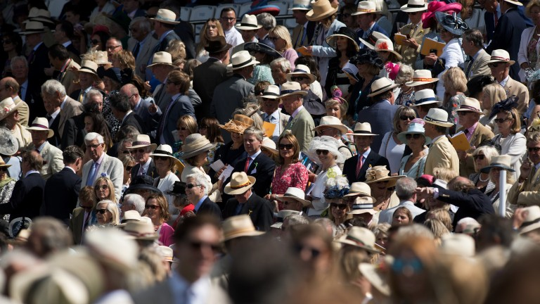 Packed to the rafters: racegoers enjoy themselves on the downs