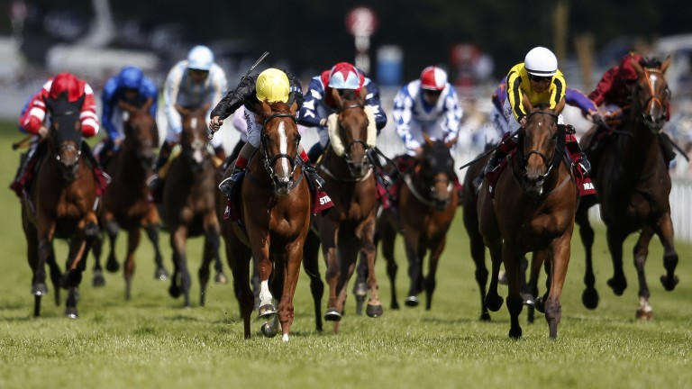 Head down: Stradivarius (Andrea Atzeni, yellow cap) beats Big Orange in last year's Goodwood Cup
