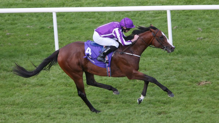 The Pentagon: won Tyros Stakes last time out