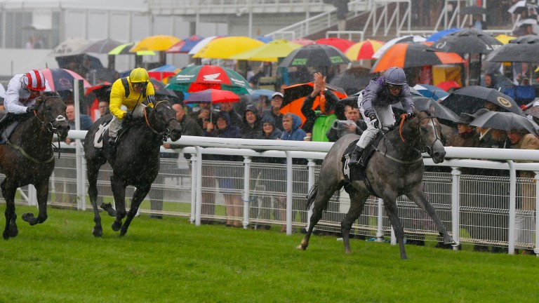 Havana Grey and PJ McDonald win the Molecomb Stakes at Goodwood on Wednesday