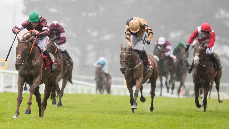 Balko Des Flos (green cap) on his way to victory in the Galway Plate