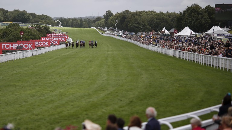 It is the final day of the Qatar Goodwood festival