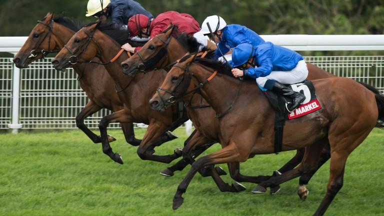 Head-bobber: Endless Time (near side) swoops late to win the Lillie Langtry