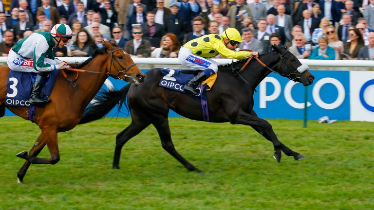 Isabel De Urbina chases home Horseplay at Newmarket in May