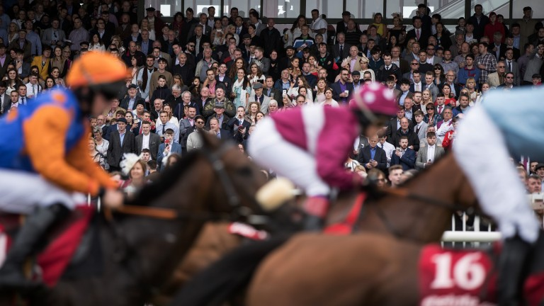 Galway: runners in the 1m4f maiden pass the packed stands