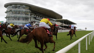 Galway: Miss Eyecatcher and David Mullins lead the field home in the mares' handicap hurdle