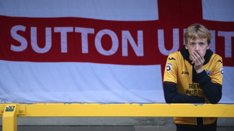 A Sutton United fan dreams of glory