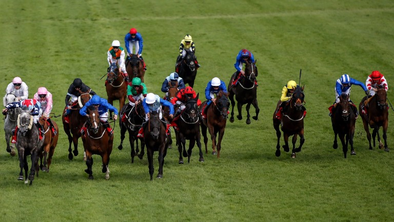Master The World (grey, left) gets a charmed passage up the rail to win the Betfred Mile