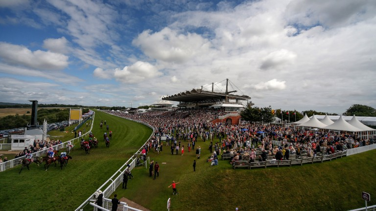 Goodwood: racegoers on the packed stands watch a thrilling finish in the Betfred Mile