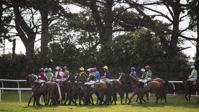 Galway: runners and riders in the Blazers Handicap Chase wait for the start amid sunshine and showers