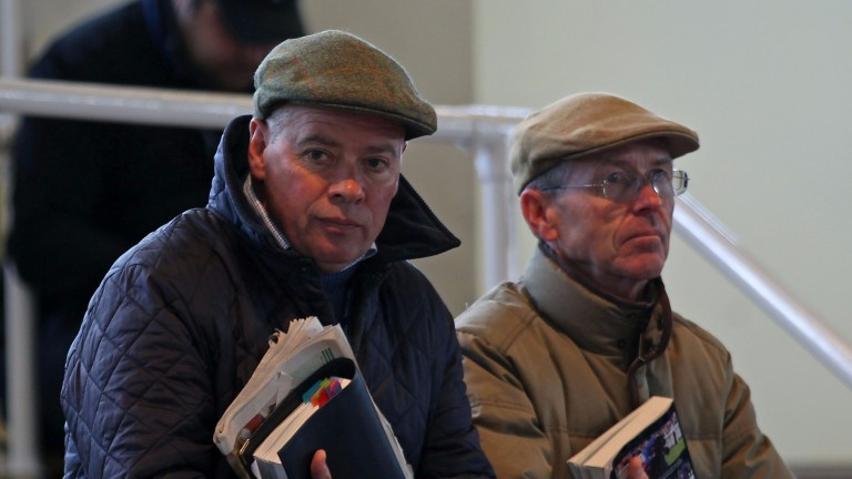 Clive Cox (left) and John Reid survey the ring at Tattersalls