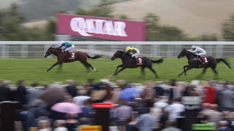 Barraquero (2) provided his damsire Oasis Dream with a third stakes-winning two-year-old in 2017 with success in the Richmond Stakes