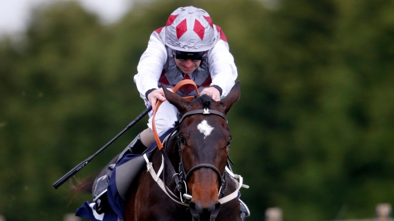 Starlight Mystery: remains on an upward curve and David Baxter rates her  one to follow