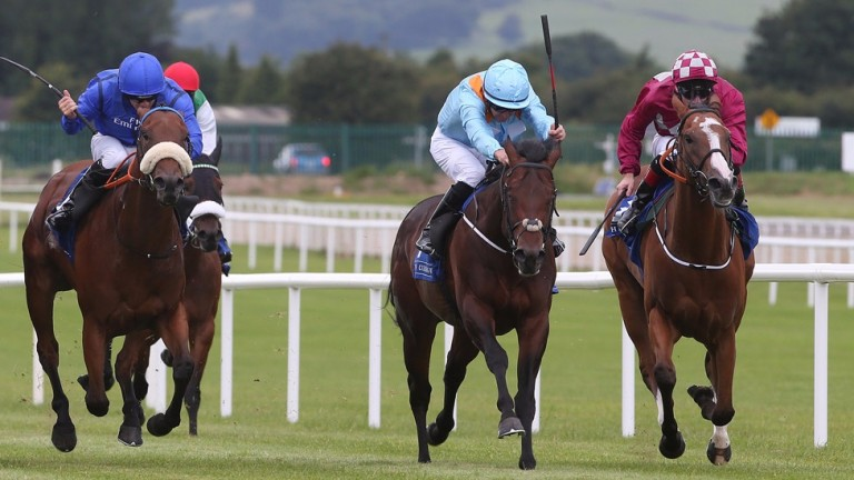 Ice Cold In Alex (centre) picked up in very smart style when winning at the Curragh last time.