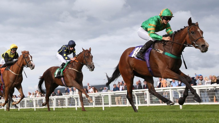 Emma Sayer: in winning form on Dalby Spook at Carlisle