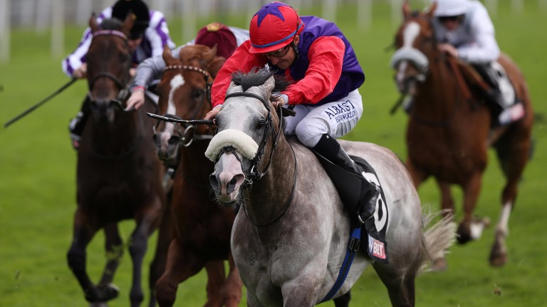 Success Days showed his typical toughness when landing the Sky Bet York Stakes (Group 2) recently.