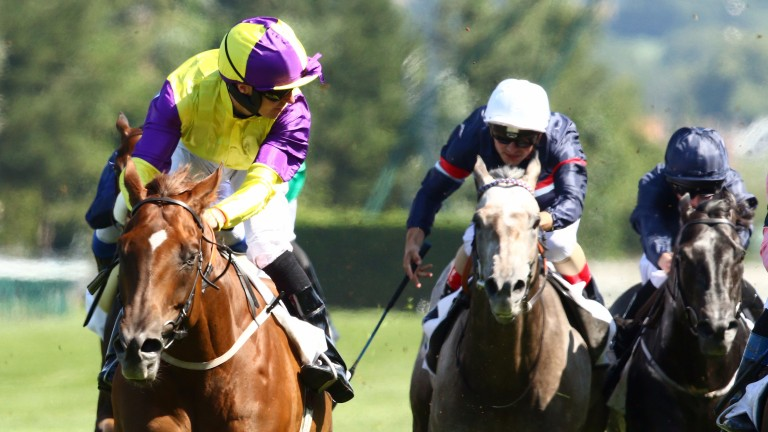 Tom Eaves looks across to see he and Brando have held on to win the Maurice de Gheest
