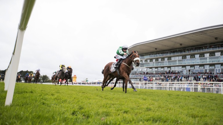 Fairy strikes Gold: the 7f maiden goes the way of Yulong Gold Fairy, ridden by Leigh Roche and trained by Dermot Weld