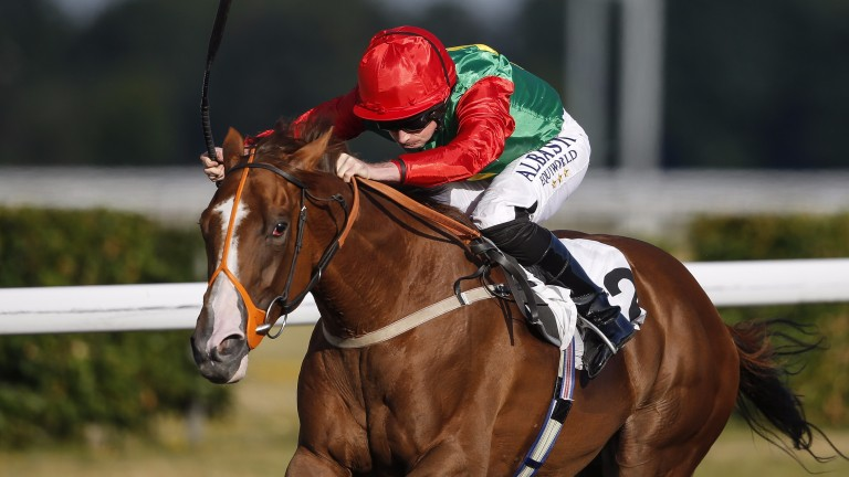 Billesdon Brook: one of two winners out of his dam at Glorious Goodwood last week