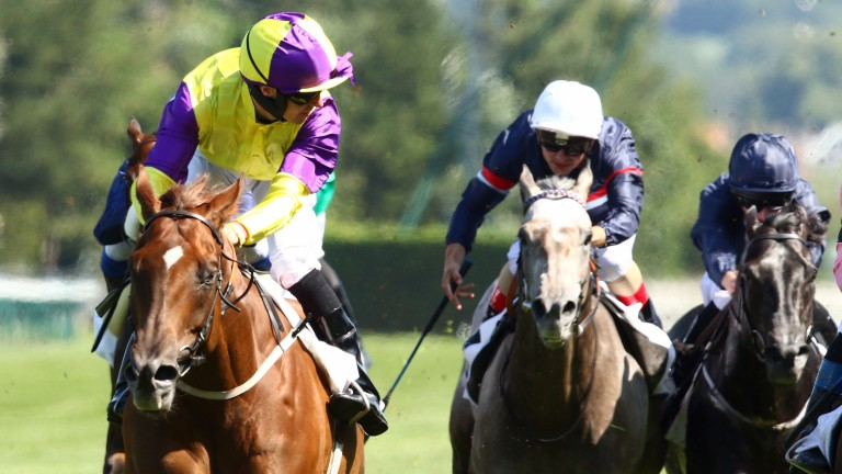 Brando: jockey Tom Eaves eyes his opposition in the Prix Maurice de Gheest at Deauville