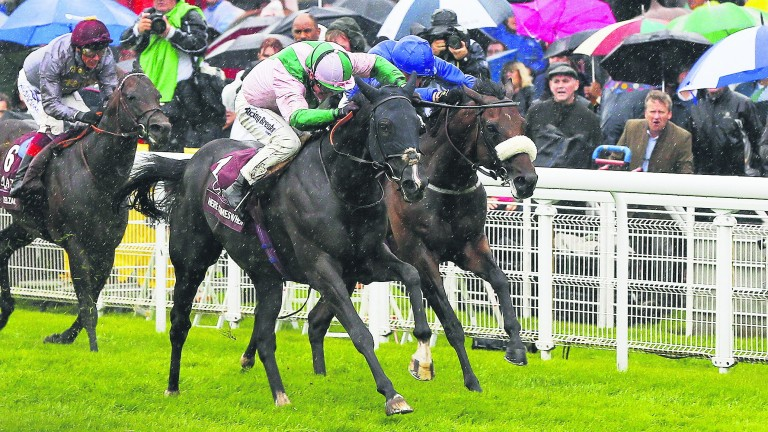 Here Comes When outpoints Ribchester in last year's rain-lashed Sussex Stakes