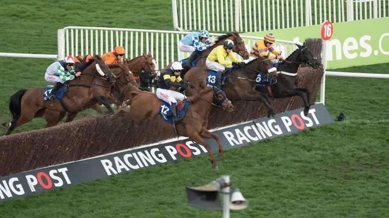 Tully East (13, centre) jumps the last fence in the Close Brothers Novices' Handicap Chase at Cheltenham in March. A higher rating will be required to compete in 2018.