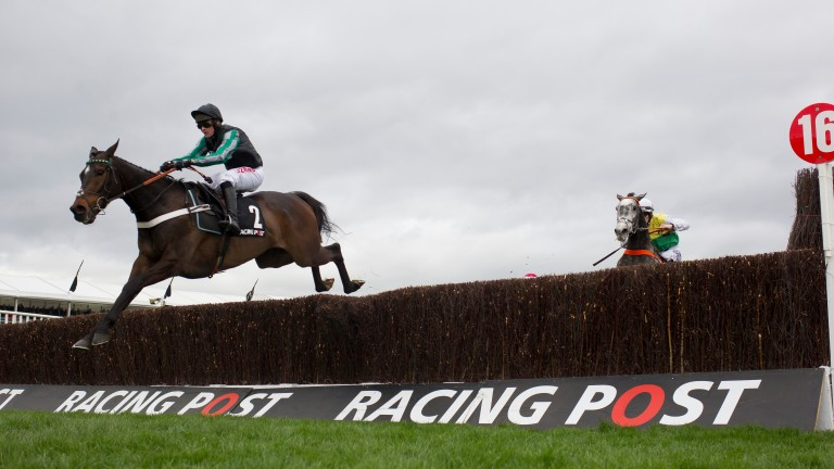 Last season's leading novice Altior jumps the last clear in the Racing Post Arkle Chase