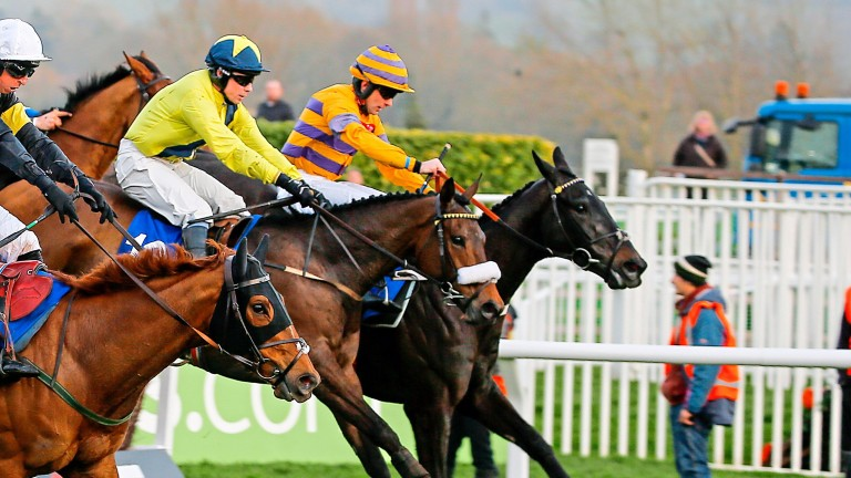 Tully East (yellow) heads for victory in the Close Brothers Novices' Handicap Chase at the Cheltenham Festival