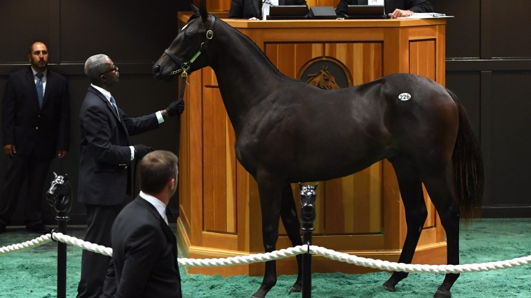 The War Front colt who brought Godolphin into another duel with Coolmore