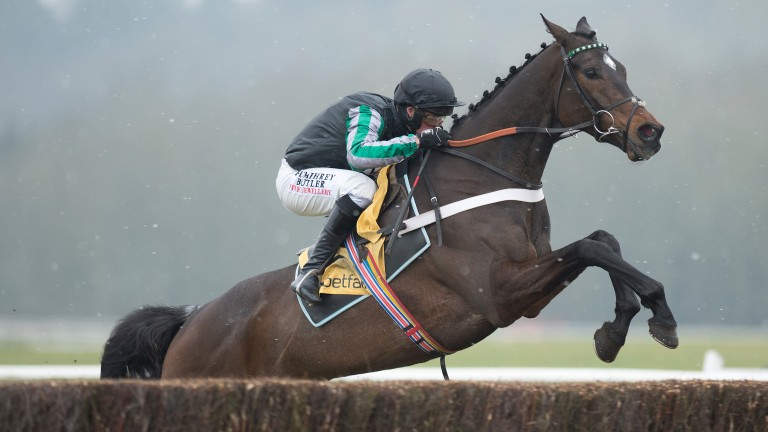 Altior: early favourite for the Champion Chase in March