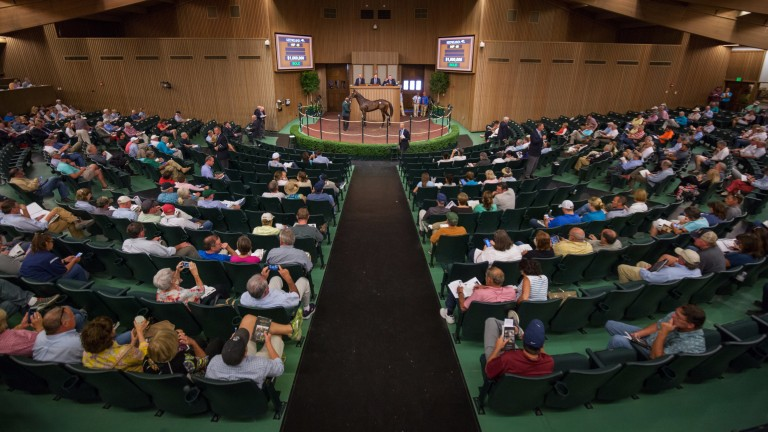 The flagship Keeneland sale runs from September 11 to 23