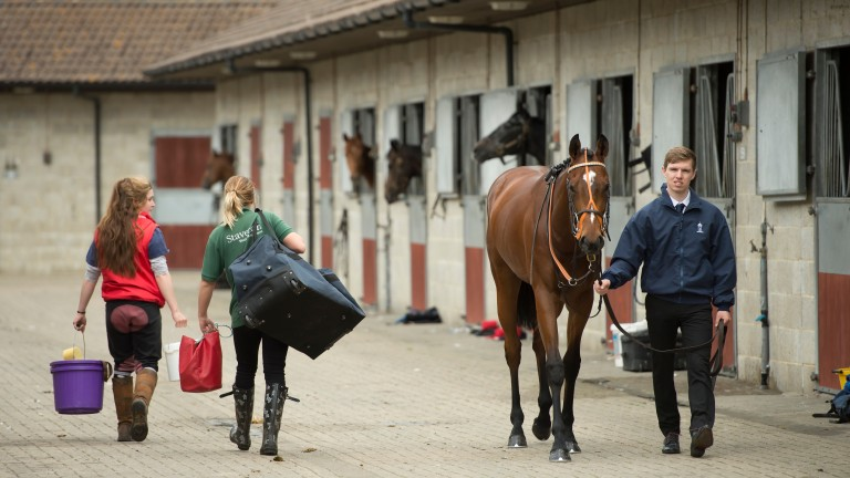 Stable staff are set to receive a three per cent wage increase