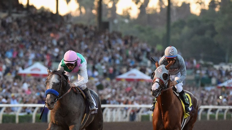 Arrogate conquers California Chrome in last year's Breeders' Cup Classic