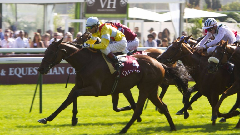 Kasbah Bliss (Gerald Mosse) wins the 2011 Prix du Cadran at Longchamp