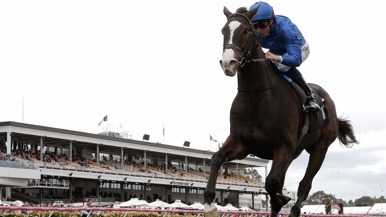 Francis of Assisi: winning the Group 3 Queen Elizabeth Stakes at Flemington last year