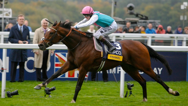 Frankel got off the mark in South Africa on Wednesday