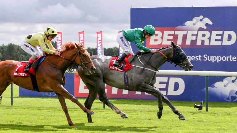 Frankuus and Joe Fanning deny Mount Logan to win the Rose of Lancaster Stakes